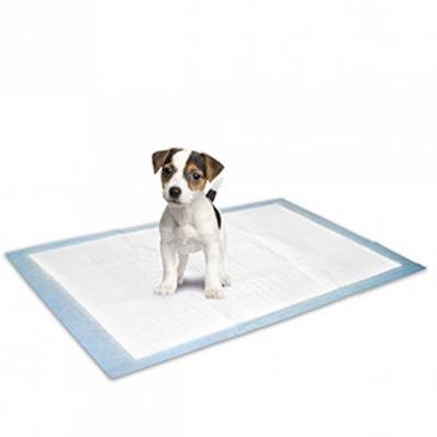 Tapis éducateur absorbant